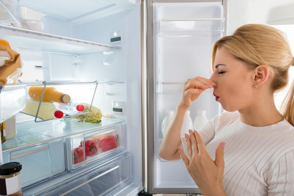 Химический запах холодильника