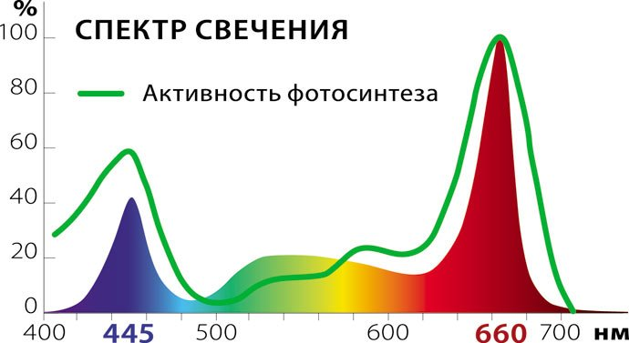 Фитолампа